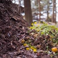 Workshop zu Boden, Kompost und Bokashi