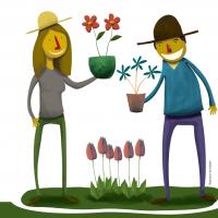 Blumenzwiebelnsetzen