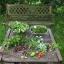 Gärten als Keimzellen zukunftsfähiger Entwicklung