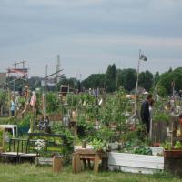 Aufbau und Verstetigung von Gemeinschaftsgärten