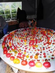 tomatenvielfalt-tomatensamen
