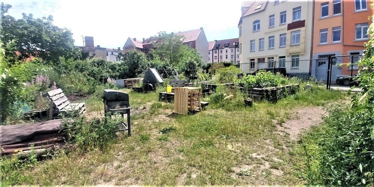 Interkultureller Garten Erfurt20210615_120113 (3)